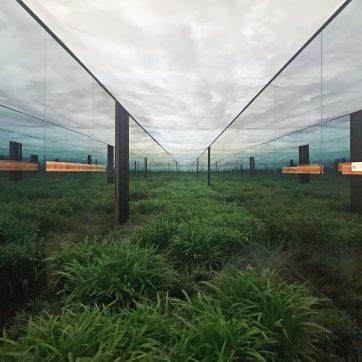 argentina-pavilion-venice-architecture-biennale